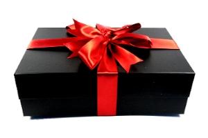 К рюкзакам и сумкам Thule термос Vango 500ml в подарок!